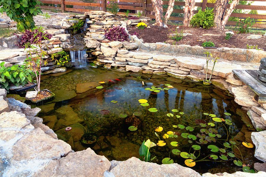 Designing A Koi Pond That S Easy To Maintain